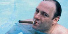 La série télévisée Les Soprano et le film The Swimmer (Le Plongeon) ont en commun la représentation de l'envers du rêve américain par un trop-plein véhiculé par le motif de la piscine. Ce trait esthétique, émergeant dans des périodes charnières, exprime inconsciemment l'affairement sous-jacent d'une industrie culturelle tentant de remonter la pente durant des périodes de mutations technologiques, économiques et sociales.